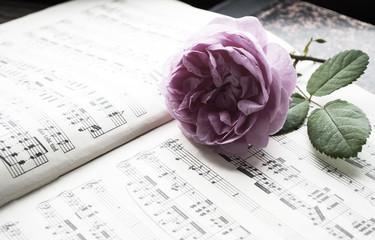 Alte Musiknoten mit erblühter Rose (Rosaceae), Liebeskummer, Trauer, Tod