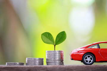 Green Seedlings tree grow on coin money of graph business and red car.