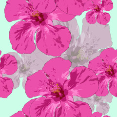 Hibiscus. Seamless pattern texture of flowers. Floral background, photo collage