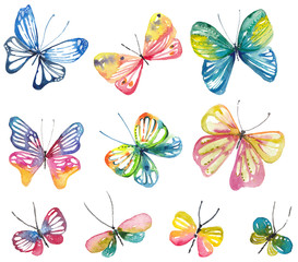 Watercolor butterfly collection
