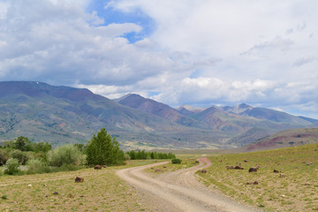 Earth road in steppe in Altai mountains. Altay Republic, Siberia, Russia.