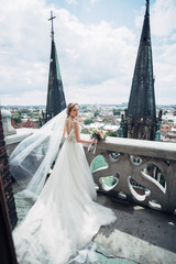 Rich bride stands on the roof of Gothic cathedral