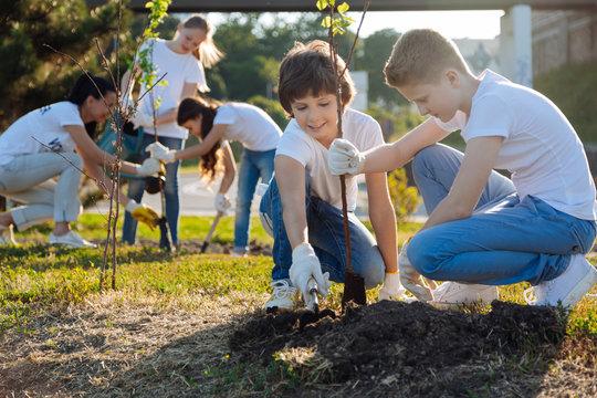 Schoolchildren planting young fruit trees