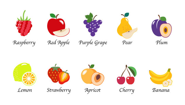 Organic nature health fruit isolated vector collection set