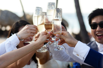 Newlyweds and friends clang their glasses standing outside