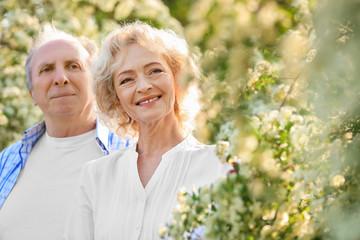 Happy senior couple near blossom bushes in spring park