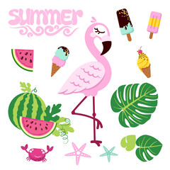 Pink flamingo isolated on white background with ice creams and watermelons. Vector illustration