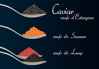 caviar - œufs de poisson - œufs de saumon - gastronomie - poisson
