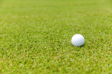 Golf ball on green grass on golf course