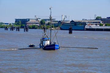 Krabbenkutter in Hamburg
