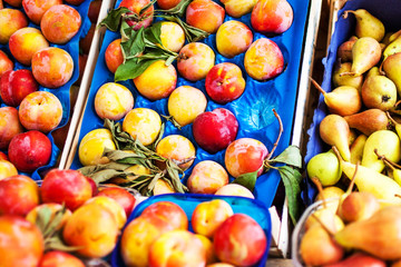 Assortment of Fresh organic fruits on market stall.