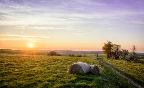Heuballen Strohballen im Sonnenuntergang  Feld Acker Landwirtschaft Erzgebirge