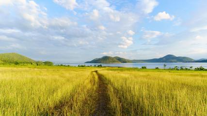 Beautiful scenery of Srinagarind Reservoir or Srinakharin dam with golden meadow in the morning , Kanchanaburi Province , Thailand