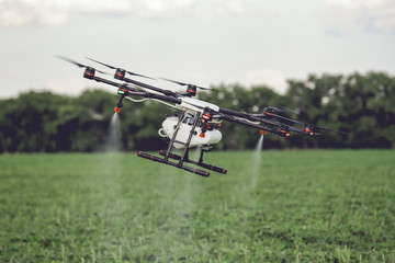 Agriculture drone fly to sprayed fertilizer on the rice fields. Industrial agriculture and smart farming