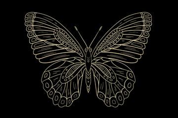 Butterfly line vector illustration. Vintage. Black
