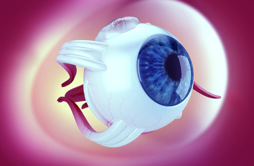 3d illustration of a Human eye structure