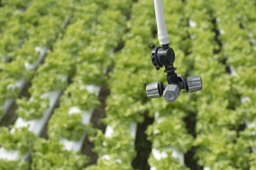 Closeup on agriculture sprinkler head water farm.