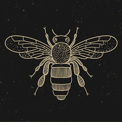 Vintage line bee. Vector illustration.