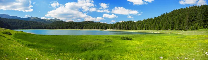 Keuken foto achterwand Pistache landscape near mountain lake