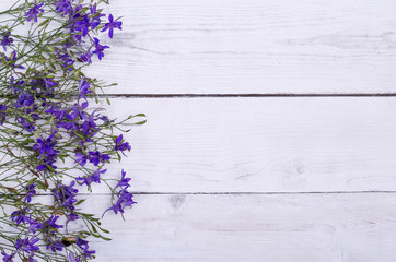 Wild flowers on a wooden table, top view. Beautiful summer background, free space.