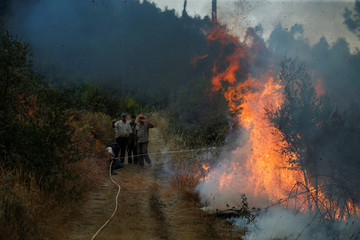 Villagers work to put out a forest fire in the village of Brejo Grande