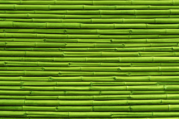 Green bamboo fence background and texture