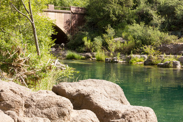 Calm Fossil Creek Flows Lazily