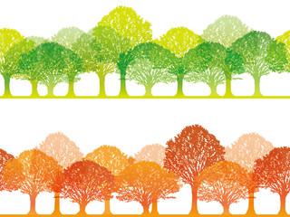 シームレスな四季の森 春と秋