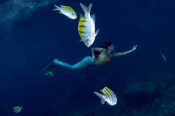 Mermaid swimming underwater in the deep blue sea with fishes