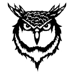 Isolated illustration of a head of an owl