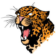 Isolated illustration of a leopard head