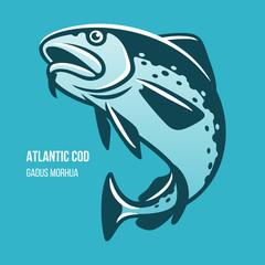 Atlantic Cod fish vector illustration