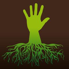 arbre - main - environnement - symbole - forêt - nature - écologie