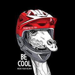 Portrait of the Giraffe in a red Bike helmet. Vector illustration.