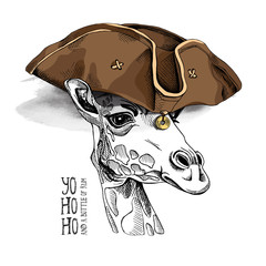 Giraffe in a Leather Pirate hat. Vector illustration.