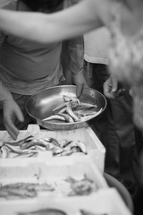 A trader at the fish market puts the fish in a cup of weights