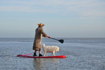 paddle chien