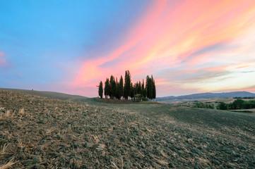 Toscana Cipressi GPS  43.062667°  11.558843°