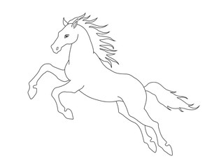 Line illustration of jumping horse for coloring books. Vector image.