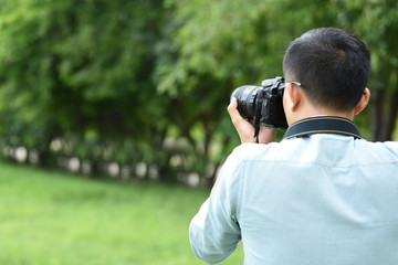 Photographers are taking pictures of nature. Green forest