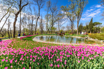 Traditional Tulip Festival in Emirgan Park, a historical urban park located in the Sariyer district of Istanbul, Turkey. Tourists visit and spend the weekend.ISTANBUL/TURKEY- APRIL 15,2017