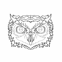 Realistic owl head coloring