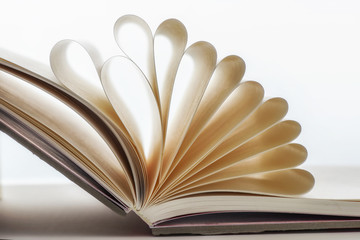 Blank open book with shape of paper, shallow depth of field idea