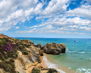 Atlantic blossoming coast (Algarve, Portugal).