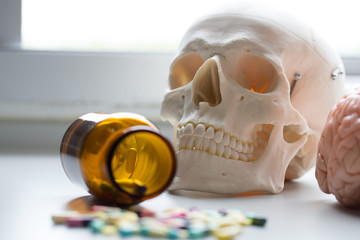 Skull model, Pharmaceutical Drugs and Heart health for education in laboratory.