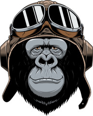 Monkey in helmet pilot.