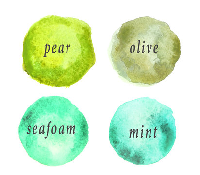 Spots of green color palette on white background