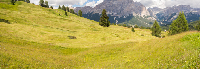 Poster Heuvel Meadows at high altitudes forming gentle hills. Dolomites, Alta Badia, Sud Tirol, Italy