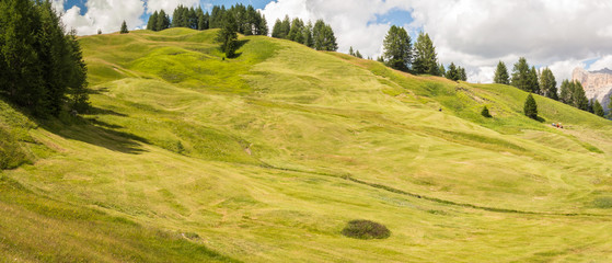 Photo sur Plexiglas Colline Meadows at high altitudes forming gentle hills. Dolomites, Alta Badia, Sud Tirol, Italy