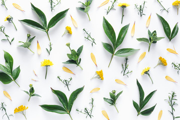 Pattern With Green Leaves And Yellow Flowers